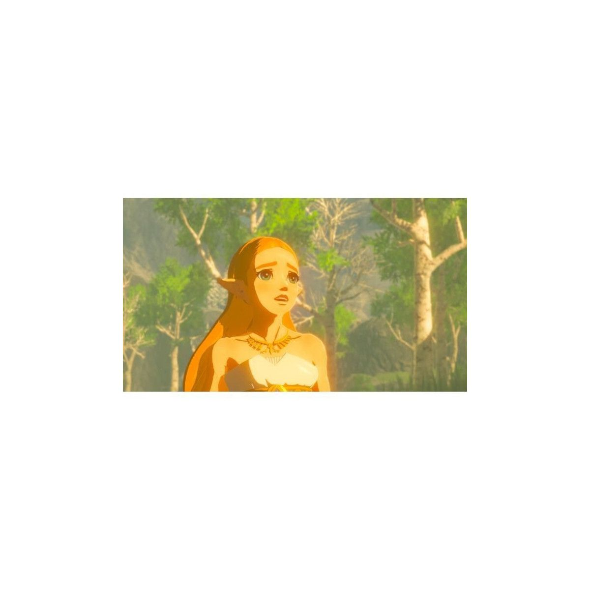 Acheter The Legend Of Zelda Breath Of The Wild Manette