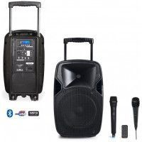 ENSEMBLE PORTABLE EUROPSONIC MOOVER 250